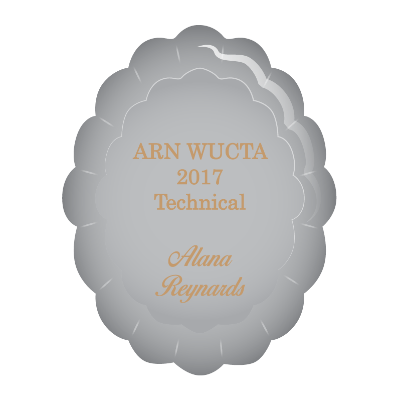 WIICTA Technical Excellence.png